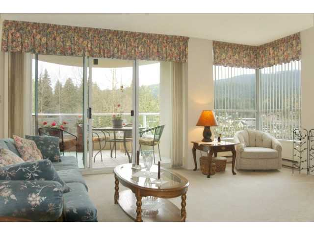 # 504 995 ROCHE POINT DR - Roche Point Apartment/Condo for sale, 2 Bedrooms (V1114084) #4